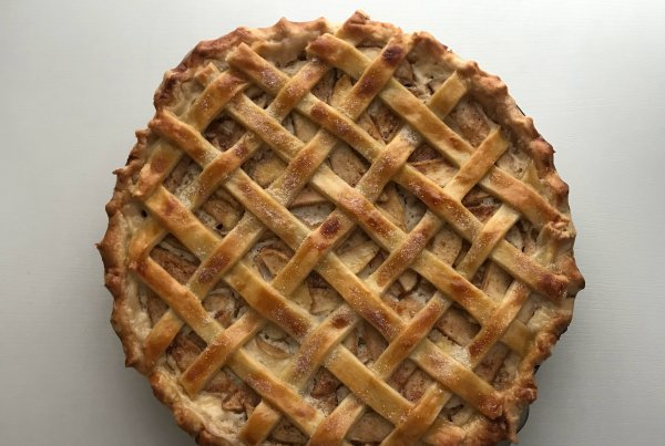 Pie Insurance sees record growth and surpasses $100M in premium
